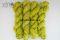 31 zeleno žltá